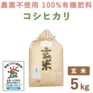滋賀県産 無農薬100%有機肥料 コシヒカリ玄米 5Kg