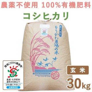 滋賀県産 無農薬100%有機肥料 コシヒカリ玄米 30kg
