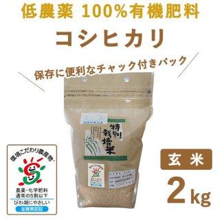 滋賀県産 低農薬100%有機肥料 コシヒカリ 玄米2kg