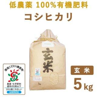 滋賀県産 低農薬100%有機肥料 コシヒカリ 玄米5kg