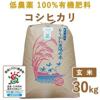 滋賀県産 低農薬100%有機肥料 コシヒカリ玄米30kg