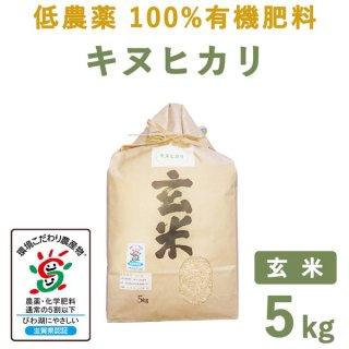 滋賀県産低農薬100%有機肥料キヌヒカリ玄米5kg