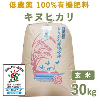 滋賀県産低農薬100%有機肥料キヌヒカリ玄米30Kg