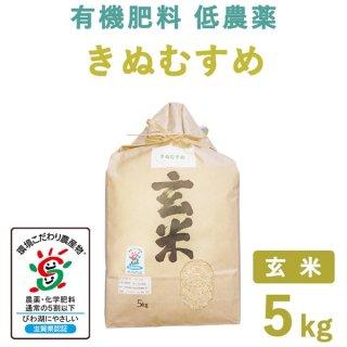 滋賀県産 きぬむすめ玄米5kg