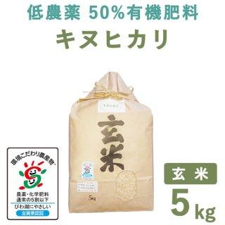 滋賀県産低農薬50%有機肥料キヌヒカリ玄米5kg