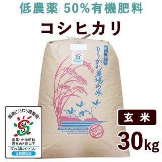 滋賀県産 低農薬50%有機肥料コシヒカリ 玄米 30kg