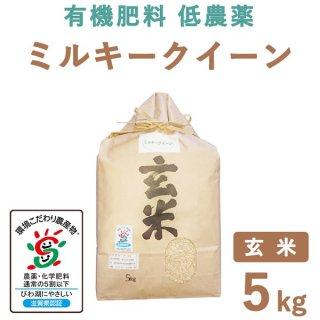 滋賀県産 ミルキークィーン 玄米 5Kg