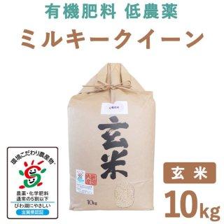 滋賀県産 ミルキークィーン 玄米 10Kg