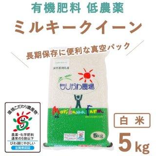 滋賀県産 ミルキークィーン 真空白米5kg