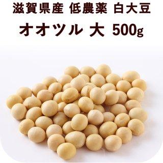 滋賀県産 低農薬白大豆 オオツル 大 500g