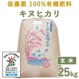 <img class='new_mark_img1' src='https://img.shop-pro.jp/img/new/icons14.gif' style='border:none;display:inline;margin:0px;padding:0px;width:auto;' />滋賀県産低農薬100%有機肥料キヌヒカリ玄米25kg