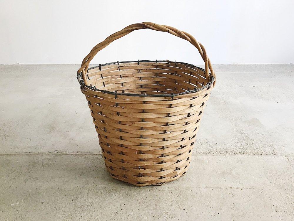 Basket  ( 24 )
