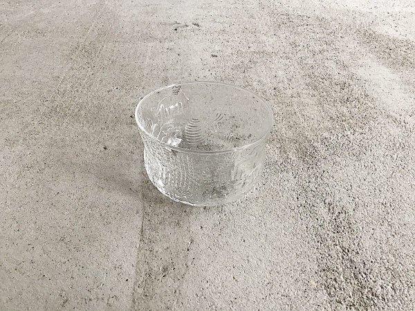 Glass Bowl /Fauna