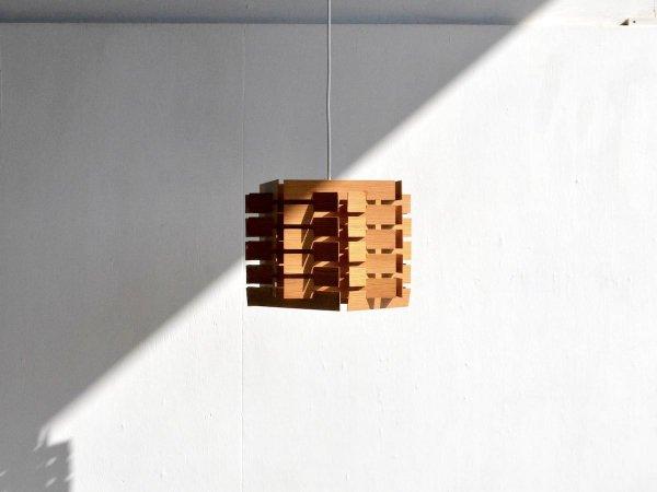 Pendant Lamp (100)