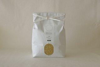 【玄米】 自然栽培ササニシキ (熊本県産) 1kg