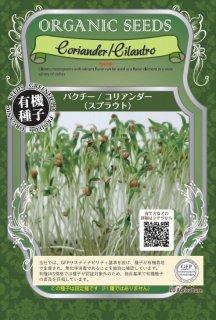 コリアンダー / パクチー / 有機 種子 固定種 / グリーンフィールド / スプラウト [小袋]