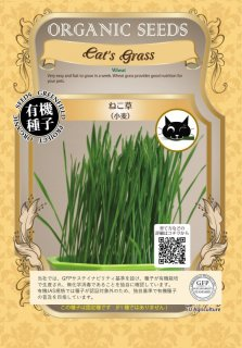 ねこ 草 / 有機 種子 固定種 / グリーンフィールド / ペット用 [中袋]