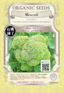 ブロッコリー / グリーン カラブリーゼ / 有機 種子 固定種 / グリーンフィールド / ブラシカ [小袋]