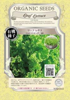 リーフレタス / ロロビオンダ 緑 / 有機 種子 固定種 / グリーンフィールド / 葉菜 [小袋]