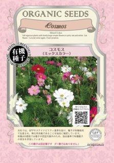 コスモス / ミックスカラー / 有機 種子 固定種 / グリーンフィールド / 花 [小袋]