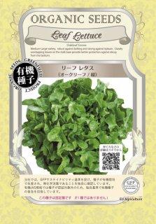 リーフレタス / オークリーフ / 緑 / 有機 種子 固定種 / グリーンフィールド / 葉菜 [小袋]