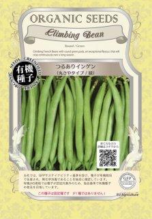 つるあり インゲン / 丸さや タイプ / 緑 / 有機 種子 固定種 / グリーンフィールド / 豆類 [大袋]