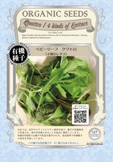 クワトロ 4種 の レタス / 有機 種子 固定種 / グリーンフィールド / ベビーリーフ [中袋]