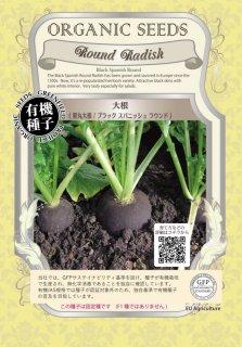 大根 / 黒丸 だいこん / ブラック スパニッシュ ラウンド / 有機 種子 固定種 / グリーンフィールド / 根菜 [小袋]