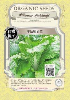 半 結球 白菜 / 有機 種子 固定種 / グリーンフィールド / ブラシカ [小袋]