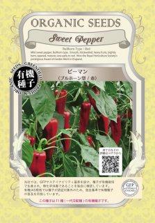 ピーマン / ブルホーン 型 / 赤 / 有機 種子 / グリーンフィールド / 果菜 [小袋]