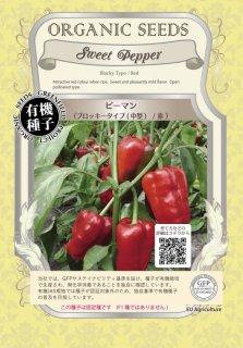 ピーマン / ブロッキータイプ / 中型 / 赤 / 有機 種子 固定種 / グリーンフィールド / 果菜 [小袋]