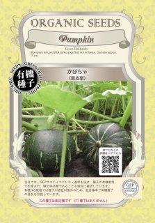かぼちゃ / 黒皮栗 / 有機 種子 固定種 / グリーンフィールド / 果菜 [小袋]