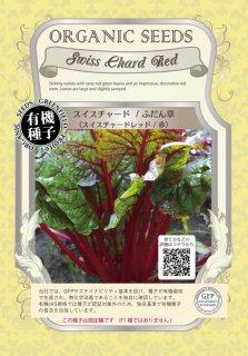 チャード スイスチャード / ふだん草 / 赤 / 有機 種子 固定種 / グリーンフィールド / 葉菜 [小袋]