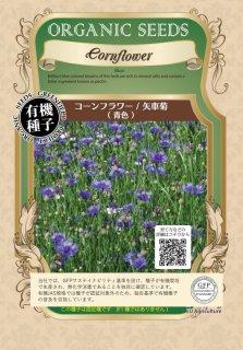 コーンフラワー / 矢車菊 / 青 / 有機 種子 固定種 / グリーンフィールド / ハーブ [小袋]