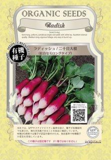 ラディッシュ / 紅白 セミロング / 有機 種子 固定種 / グリーンフィールド / 根菜 [大袋]