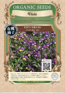 ビオラ / 有機 種子 固定種 / グリーンフィールド / ハーブ [小袋]