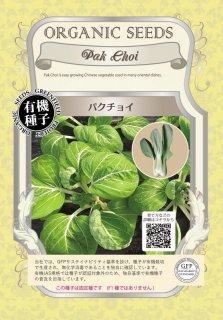 パクチョイ / 有機 種子 固定種 / グリーンフィールド / 葉菜 [小袋]