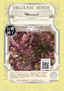 マスタード / からし菜 紫 / 有機 種子 固定種 / グリーンフィールド / 葉菜 [小袋]