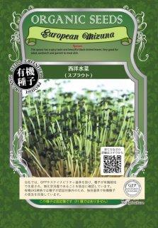 西洋 水菜 / 有機 種子 / グリーンフィールド / スプラウト [小袋]