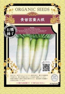 青首 宮重 大根 だいこん / 有機 種子 固定種 / グリーンフィールド / 根菜 [大袋]