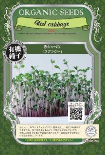 赤 キャベツ / 有機 種子 固定種 / グリーンフィールド / スプラウト [中袋]