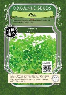 チアシード / 有機 種子 固定種 / グリーンフィールド / スプラウト [中袋]