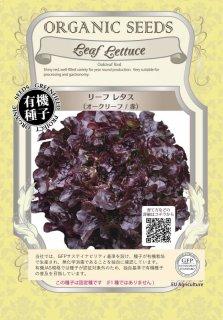 リーフ レタス / オークリーフ / 赤 / 有機 種子 固定種 / グリーンフィールド / 葉菜 [大袋]