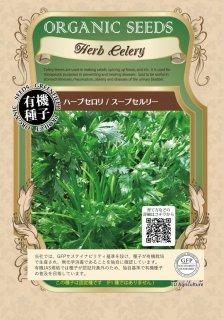 スープセロリ ハーブ セロリ / 有機 種子 固定種 / グリーンフィールド / ハーブ [大袋]