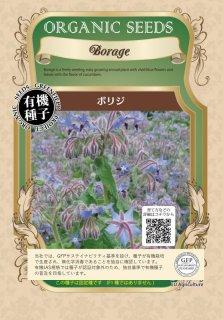 ボリジ / 有機 種子 固定種 / グリーンフィールド / ハーブ [大袋]