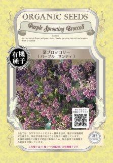 茎 ブロッコリー / サンティ / 有機 種子 / グリーンフィールド / ブラシカ [小袋]