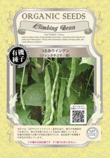 つるあり インゲン / ジャンボ 平さや / 緑 / 有機 種子 固定種 / グリーンフィールド / 豆類 [小袋]