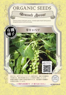 芽 キャベツ / 有機 種子 固定種 / グリーンフィールド / ブラシカ [小袋]