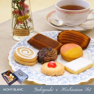 焼き菓子詰め合わせ&ハーバリウムセット クリスマス プレゼント ギフト クッキー 洋菓子 お取り寄せスイーツ
