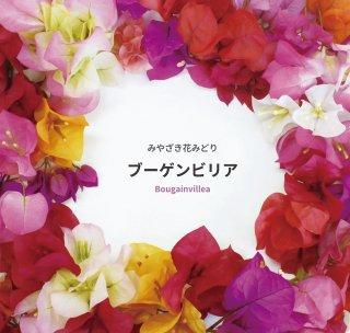 図鑑『みやざき花みどりブーゲンビリア』